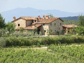 Casa Mercatale Holiday villa rental in Mercatale - Chianti - Tusdany