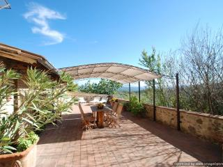 Orsina Estate - Minor House rental Murlo,villa to let Murlo Tuscany, self