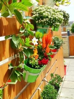 Flowers Terrace