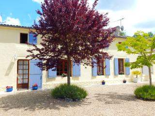 Gorgeous villa with pool, games room, gardens and summer house....just fantastic, Migron