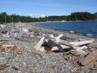 Fisherman's Bay, Lummi Island