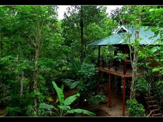 MONSOON RETREATS, Thekkady
