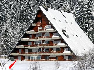 Gryon/Villars, comfortable duplex apartment 6p. beautiful mountain view, Alpe des Chaux