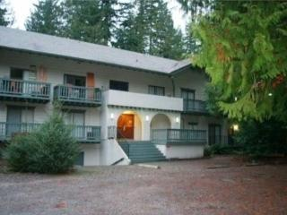 #88 Snowline Lodge Condo has WiFi + Satellite Tv!, Glacier