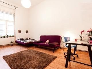 5 bedroom apartment, Budapeste