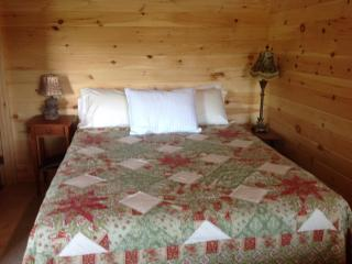 One room knotty pine cabin