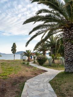 Path towards the beach