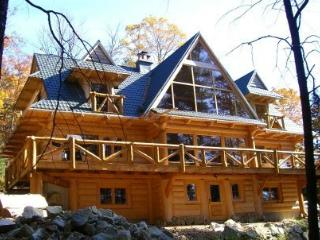 #136 Custom-built log lodge w/stone fireplace, outdoor hot tub & internet, Greenville