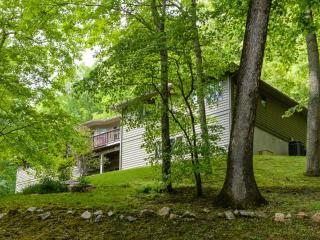 Laurel Mountain Lodge within 14 minutes of Downtown Asheville, 4 Bdrms, 4 Baths,