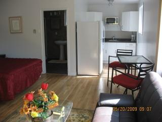 New Haven- Studio with Jacuzzi  -  2 Persons $145.00/per night, plus tax $910.00/wkly, includes tax