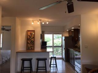 Village Manor D22Cozy, walk to beach!2 BR/1.5 bath, Kapaa