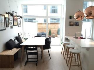 Very modern Copenhagen town house with rooftop terrace, Copenhague