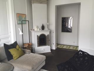 Bright well furnished Copenhagen apartment  near park