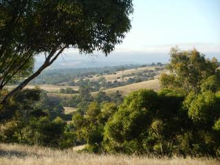 View along the Lyndoch Valley to the Barossa Ranges