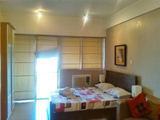 Greenbelt Makati Studio Condo for Rent Unit 24K
