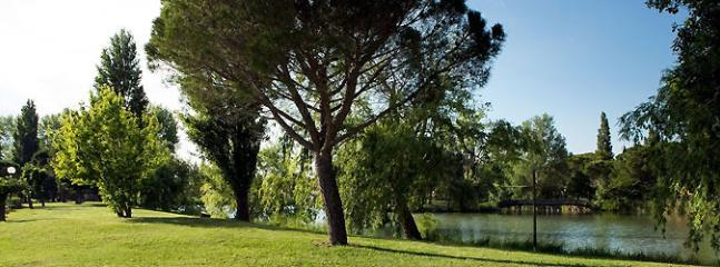 Les abord du lac