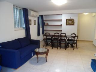 Lovely 3 br, green garden, excellent location, Jerusalem
