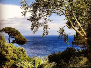 ISOLA D'ELBA SCONTO NAVE accesso diretto al  mare con giardino caletta privata