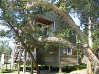 Grant III ( 3-Bedroom Home )