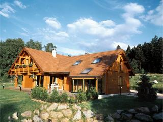 Luxury chalet near the ski slopes of Gérardmer with mountain views, fireplace & Jacuzzi, Gerardmer