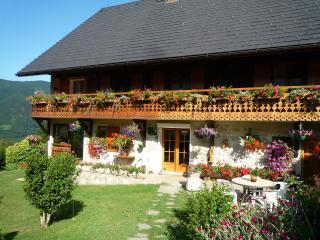 'Le Fraisy' Location de vacances  entre lacs et montagnes