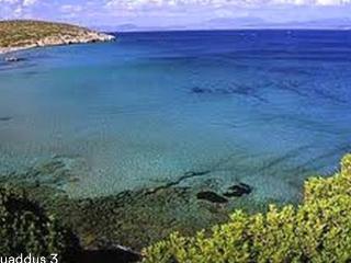 Sardegna - Primo piano in villa