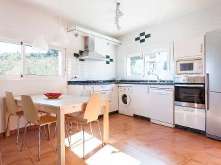 La mesa del comedor con la cocina con horno y lavavajillas incluidos
