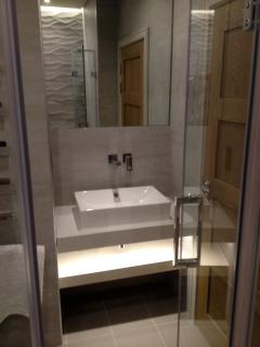 En Suite with Walk in Shower, WC and basin