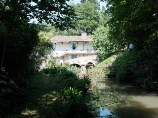 Moulin Battant Water Mill Bordeaux Region Pool, Moulon