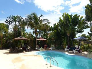 Beautiful and Spacious House With Private Pool Nea