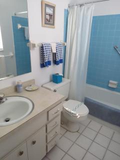 First bathroom attached to the master bedroom.