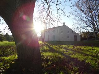 Gîte La Petite Venelle, Sainte-Gemme-la-Plaine