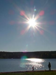 Der Greifenbach Stauweiher für Badespaß