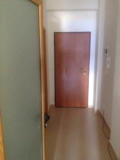 Entrance door and hallway
