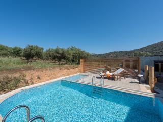 Lameriana Luxury villa with private pool, Panormos