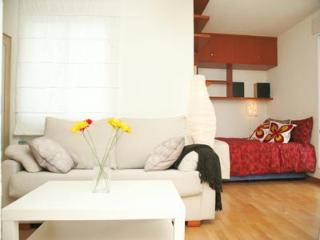 Madrid - Princesa Apartment