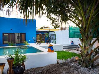 Blue Oasis, Mérida