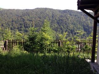 Andu's Chalet in Azuga, Transylvania