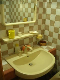 bagno principale con doccia