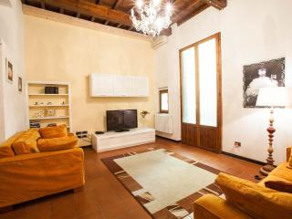 Elegant flat in Florence's Santa Croce quarter, wi-fi available with elevator
