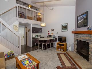Charming Studio Loft Condo Inside the Park!