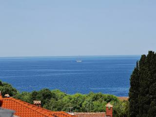 TH00114 Apartments Leonardo / One bedroom A2, Rovinj