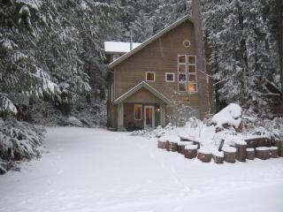 Snowline Cabin #51 - Executive style cabin!, Glacier