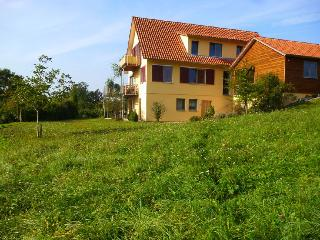Vacation Apartment in Sternenfels - 484 sqft, 2 bedrooms, max. 5 people (# 8543)