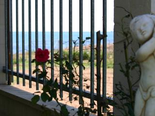 House at 50m from the beach, private pool & sauna, Alcanar