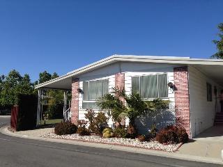 Spacious & comfortable 2000sf home in Sunnyvale