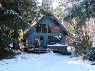 #53 Cozy cabin with an outdoor hot tub and wifi!, Glacier
