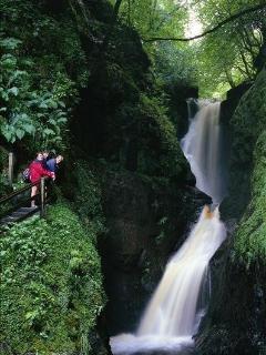 Glenariff forest park 20 miles