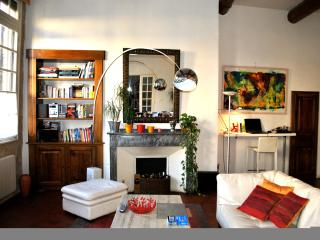 Charming and Spacious Historical Center APT in AIX, Aix-en-Provence
