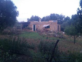 Casa ecológica en el bosque Mallorca, Algaida
